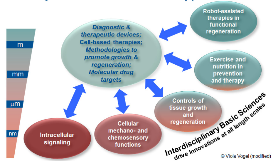 Integrative and systemic approach